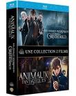 Les Animaux fantastiques + Les Animaux fantastiques : Les Crimes de Grindelwald