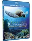 Récif de corail fascinant 3D - Spectacle captivant